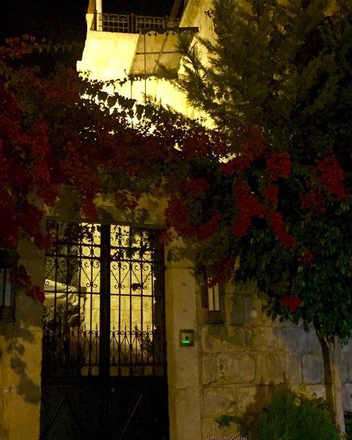 heritage lebanonhouses oldhouse nostalgia nightphotography flowers ...