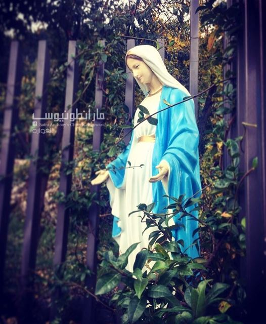 haveablessedweek with virginmary may she protect you and guide your...