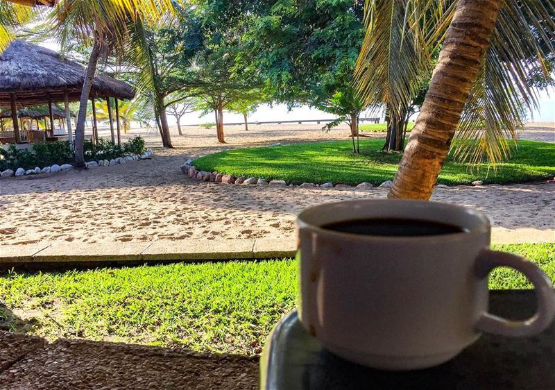Tropical morning coffee africa clubdulactanganyika travel african ... (Bujumbura, Burundi)