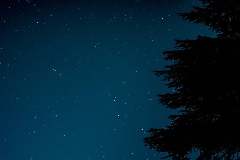 Well one can always pretend the Orionid meteor shower was shooting by... (Cedars Ground Campsite)