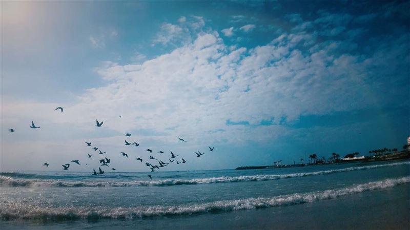 """""""Think of the happiest things,It's the same as having wings"""" - PeterPan... (الرملة البيضاء)"""