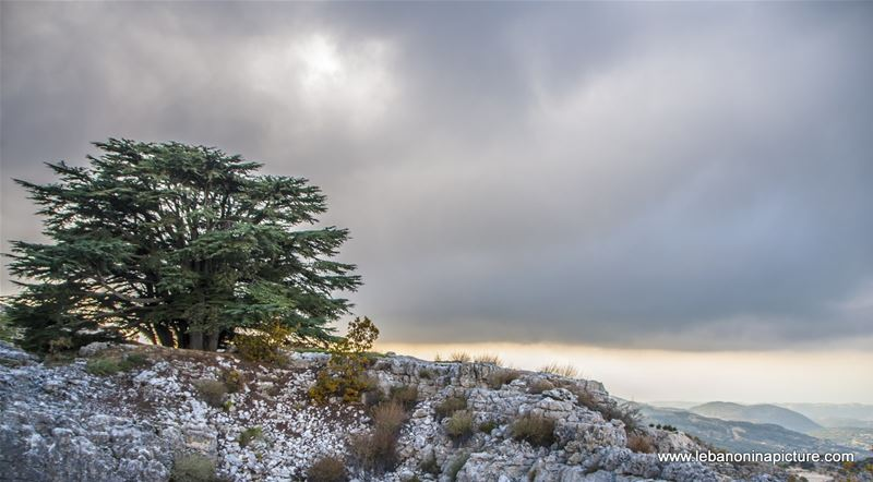 Arez El Rab Jaj - Mount Lebanon
