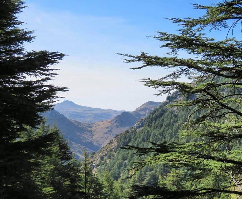 جبلنا بدمنا ترابو جبلنا مهما الدهر غضباتو جبلنامنبقى هون ما منترك جبلنات (Hadeth El Joubbe, Liban-Nord, Lebanon)