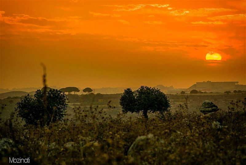 sunsets sunset_hub insta_lebanon horizon redsky redsun sunsetporn... (Lebanon Jnoub)