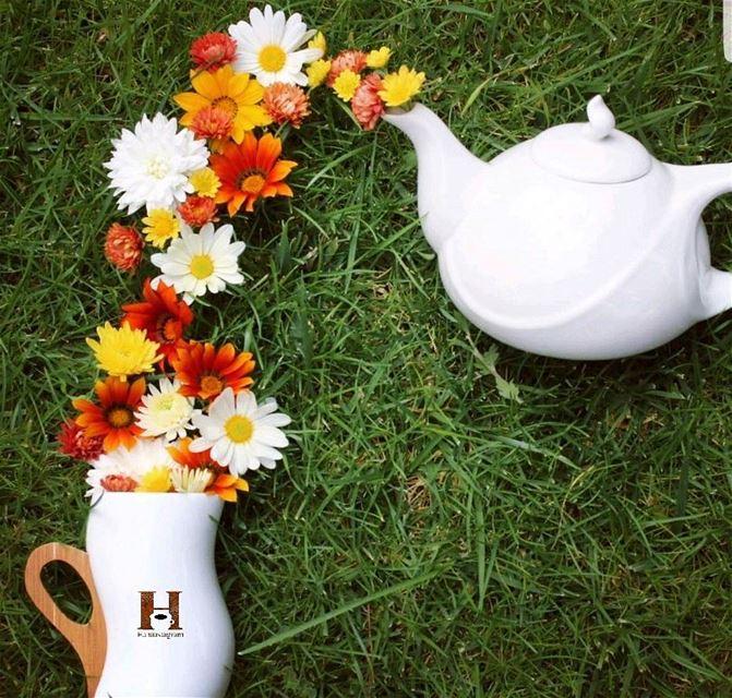 ثم يرسل الله إليك شيئاً يزهر ما اذبلته الأيام داخل قلبك ..... روقان_صباحي...