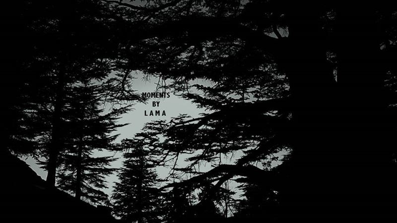 D E E P 🔭📍 LAMA_YOUSSEF ... (The Cedars of Lebanon)