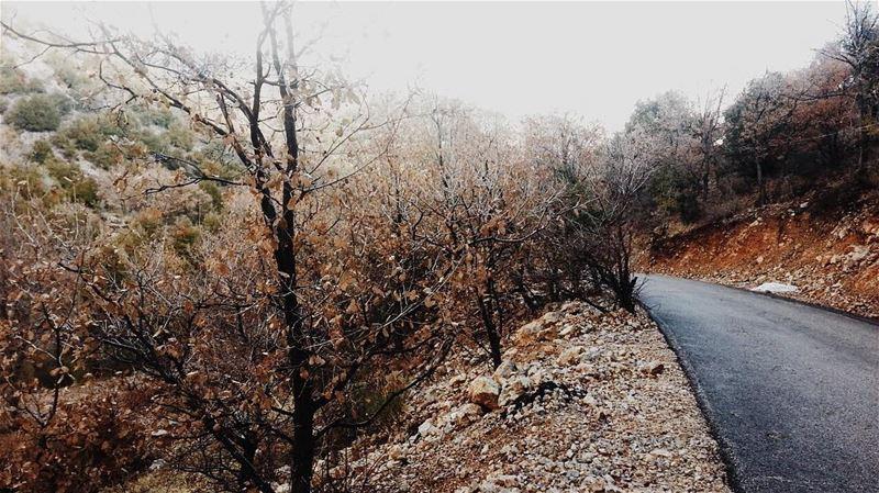 رجعت الشتوية ❄️ livelovelebanon livelovebekaa walkthroughsaghbine ... (Saghbîne, Béqaa, Lebanon)
