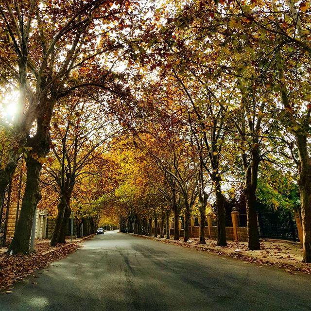 naturephotography naturelovers colorful autumn roadtrip ... (Sawfar, Mont-Liban, Lebanon)