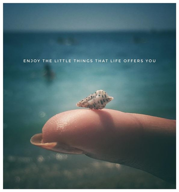 quoteoftheday  inspiration  seashells  sunday  beach  lookwhatifound ...