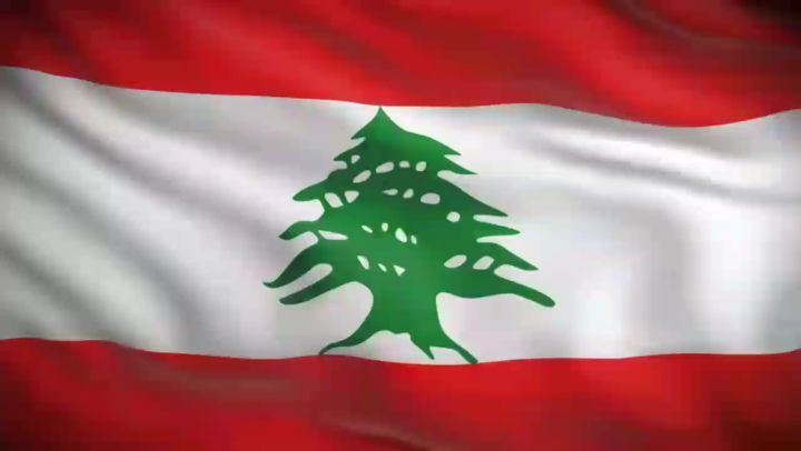 Happy independence Day  Lebanon  walid_toufic  georgina_rizk  greetings ...