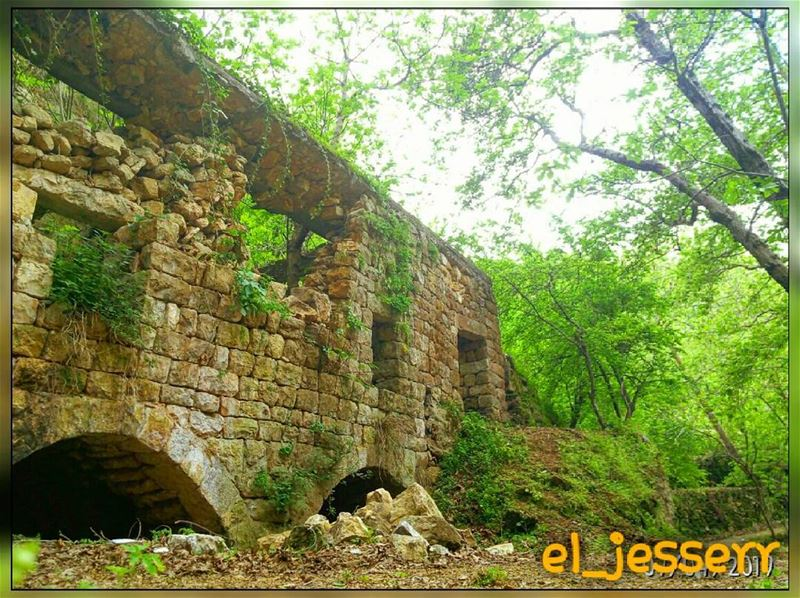 livelovelebanon ✌ مافي أجمل من لبنان🌳🍁⛅ (Deir Doureet, Mont-Liban, Lebanon)