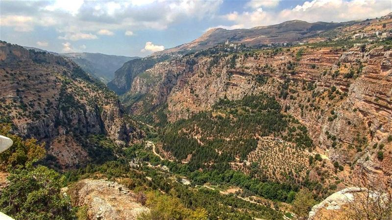 Deep into the valley📷... (Wadi Qannubin, Liban-Nord, Lebanon)