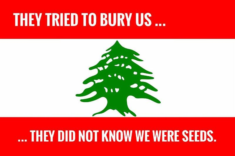 UNITED WE STAND 🇱🇧 freemypm onelebanon lebanon🇱🇧🇱🇧🇱🇧🇱🇧🇱🇧❤️❤