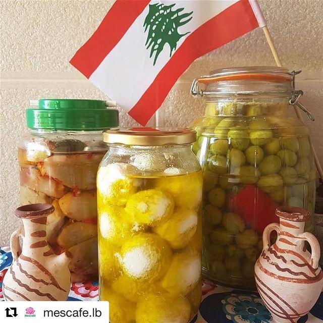 🇱🇧 Nada se compara aos sabores frescos do nosso querido Líbano! (Makdous,