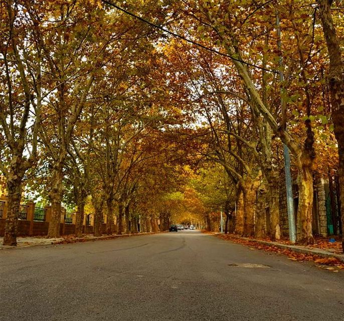 We all know that autumnal corniche 🍂 haveagoodmonday 🍂 from sawfar... (Sawfar, Mont-Liban, Lebanon)
