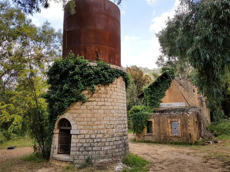 ... (Araya, Mont-Liban, Lebanon)