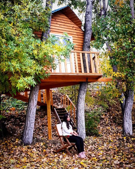 Autumn TreeHouse Colorful Nature NatureLovers Laklouk Lebanon... (El Laklouk, Mont-Liban, Lebanon)