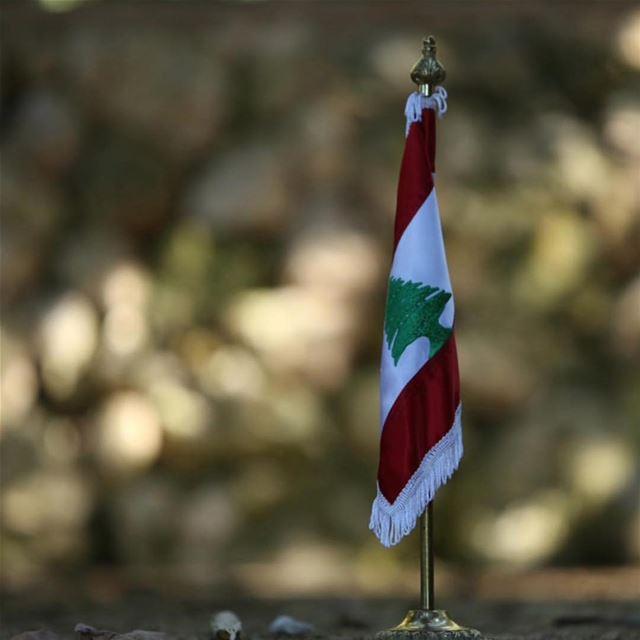 حبّة من ترابك...بكنوز الدني! بحبك يا لبنان ❤️❤️❤️كل إستقلال ولبنان بألف خير (Beirut, Lebanon)