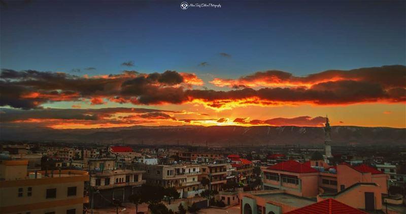 في هذه الأرض تشرق الشمس ملونة وعلى الضفة الأخرى لا يزال الأرز مختبئا ومن...