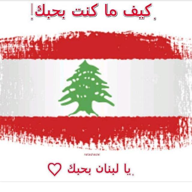 indépendance independanceday 22nov1943 lebanon proudlylebanese ...