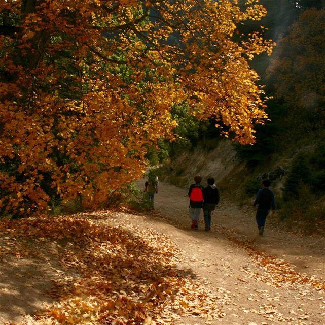 The sacred joy of autumn lebanon amazingviewsofnorthlebanon ...