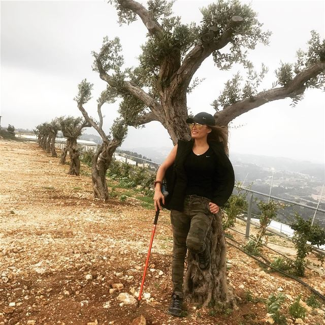 In love with olive trees 🌳 @ghalboun.village naturelover hiking... (Ghalboun Village)