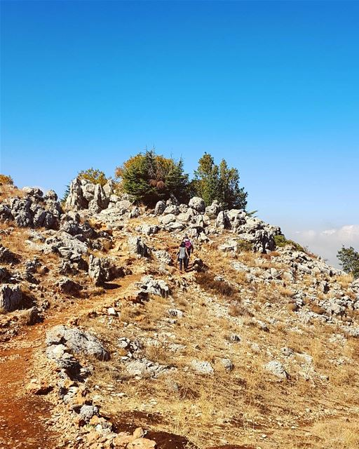 hiking naturephotography nature mountains whatsuplebanon ... (Chouf)