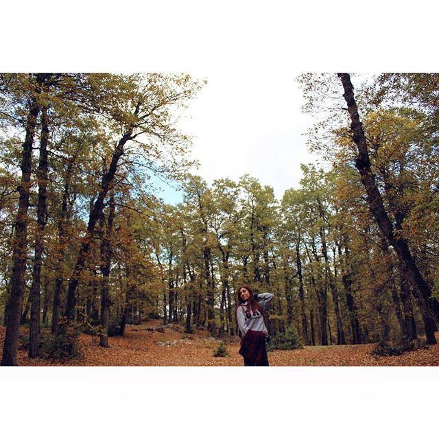 🍁🍂 livelovelebanon livelovebeirut LiveLoveSports outdooradventures ... (North Governorate)