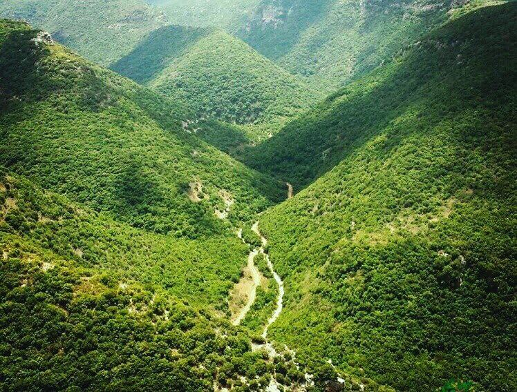 landscape view green south lebanon follow me trees like4like ... (Zibqin, Al Janub, Lebanon)