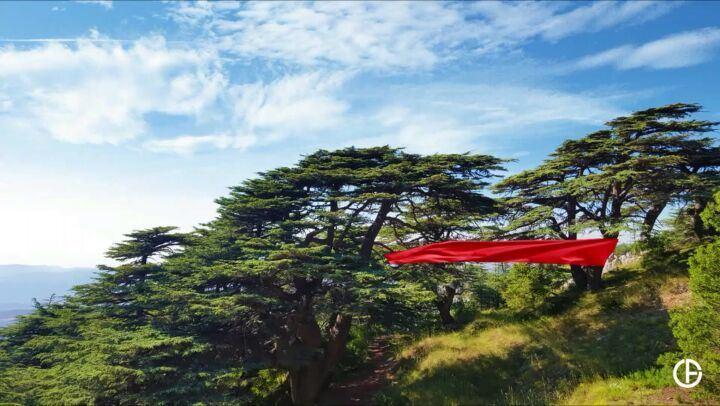 كيف ما كنت بحبك 🇱🇧 independence_day ........ lebanon beirut ... (Arz el Bâroûk)