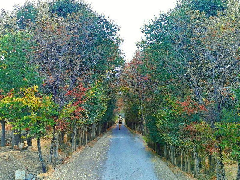 Nothing makes you appreciate nature Like a trail... (`Ammiq, Béqaa, Lebanon)