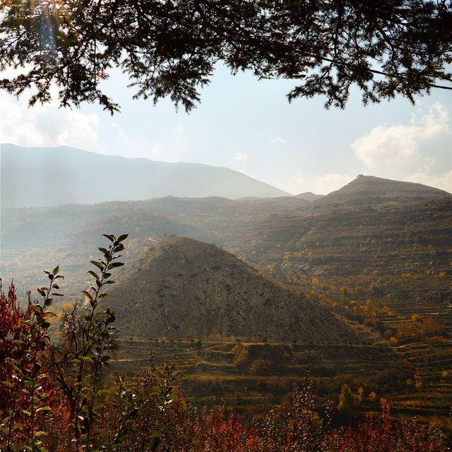 🇱🇧🇱🇧🇱🇧 naturephotography naturelovers autumn colorful ... (Bekaa Kafra)