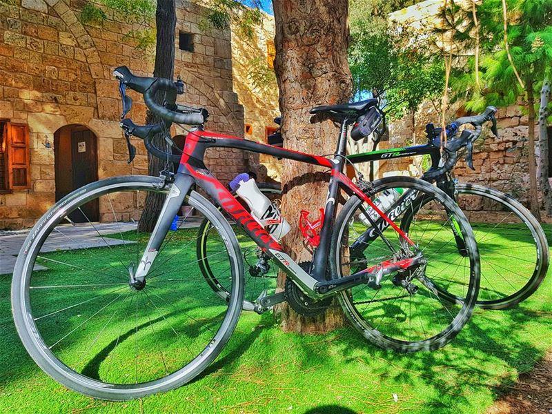 cyclinglife cycling cyclingcompany wilierbikes wiliergtr ... (Batroûn)