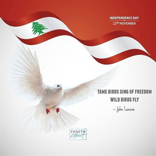 Tame birds sing of freedom. Wild birds fly. - John Lennon... (Beirut, Lebanon)