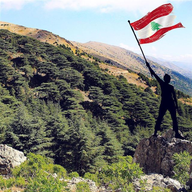 -Happy Independence Day 🇱🇧-... cedars lebaneseindependenceday ... (Lebanon)