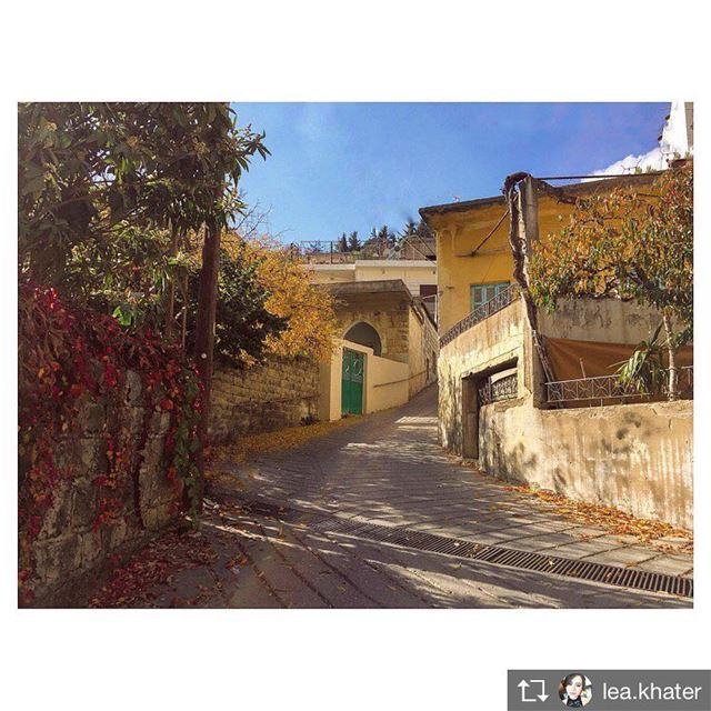 Repost from @lea.khater 🍂  walkthroughsaghbine  whatsaplebanon  lebanon ... (Saghbîne, Béqaa, Lebanon)