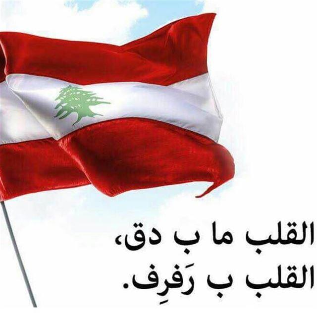 يا لبنان بجنون بحبك... بمجدك_احتميت الجيش_اللبناني لبنان بيروت شرف_تض (Lebanon)