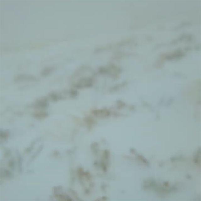 ehden salib sevenslots snow discovery2 landrover lebanon ...