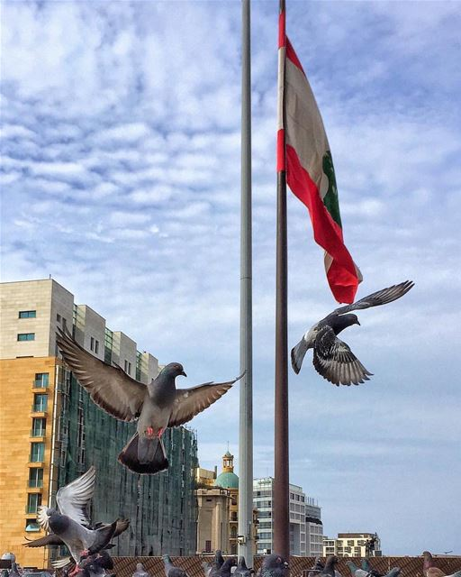 """Our flag doesn't fly because the wind moves it.. It flies with the last... (Downtown Beirut)"