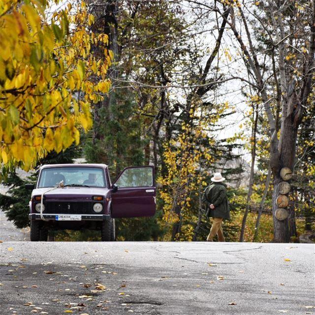 Sunday walk 🕵🏻••••••••••••••••• mountains autumn Lebanon ... (Laklouk Village Vacances)