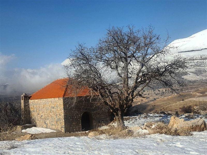 morning thursday libano house amazing snow snowlover trees sky_love... (Lebanon)