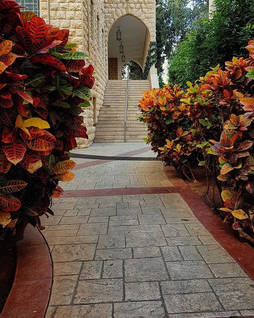 No single colour paints my path...🎨Autumn @lebamericanuni  lau beirut... (Lebanese American University - LAU)