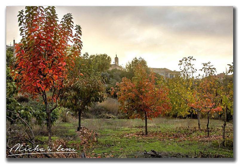 Autumn in my village Sebhel discover961 lebanon thebestinlebanon ...