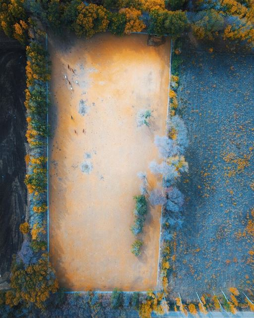 Horses' playground 🐎🐎.... lebanon instagood webstapick ... (`Ammiq, Béqaa, Lebanon)