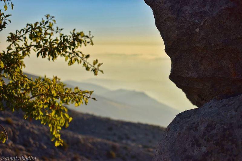 اغفر لأعدائك دائماً، فلا شيء يضايقهم أكثر من ذلك 👌 lebanon photography ... (Hasbaya)