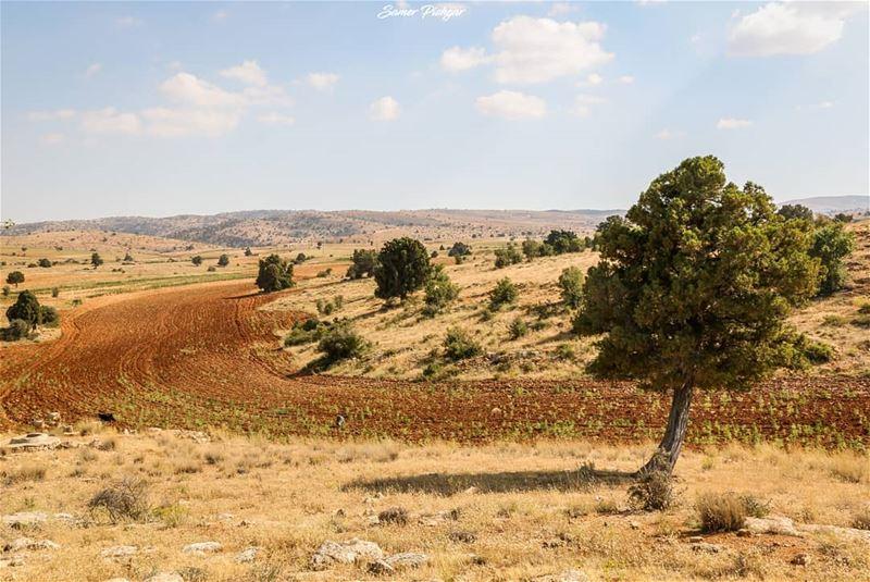 Away.. 🍃.Hermel - Lebanon... Lebanese livethelittlethings ...