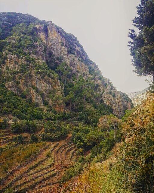 Have a blessed Sunday 🙏 lebanon wadikannoubin bcharre north nature ... (Wadi Qannubin, Liban-Nord, Lebanon)