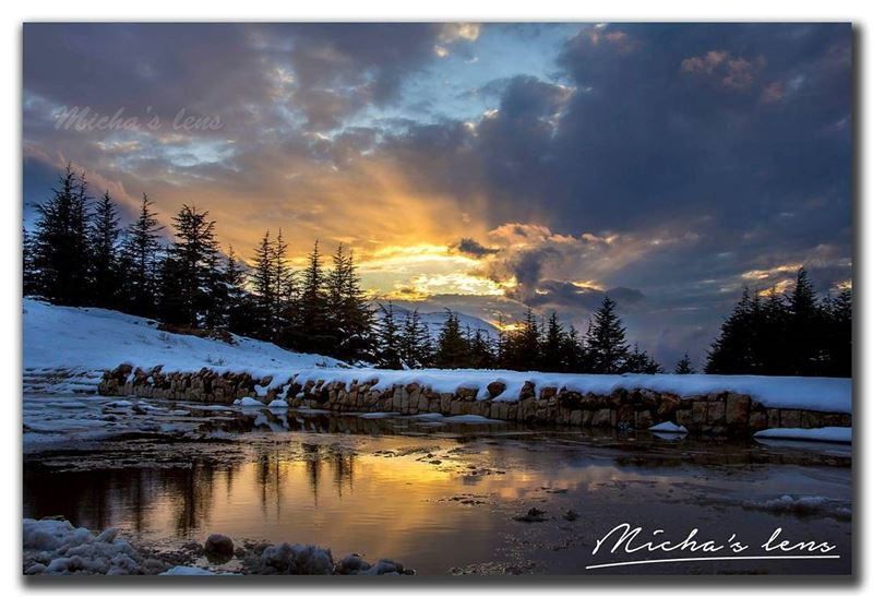 What's more beautiful then sunset with snow and cedars around ...