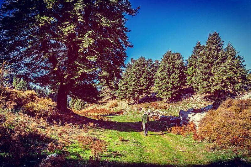 Location : Akkar, Lebanon earthpix earthofficial exploretocreate ... (`Akkar, Liban-Nord, Lebanon)