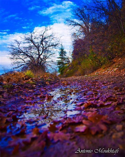 Ehden in Autumn 🍁 🍂 🍃 ehden ehdenspirit horshehden autumn autumn🍁... (Horsh Ehden)
